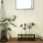 makoroさんのお部屋写真 #2