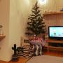asahinaさんのお部屋写真 #3