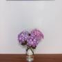 yukikoさんのお部屋写真 #5
