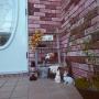 wakakusashimainomamaさんのお部屋写真 #2