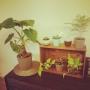 zawazawaaaaanさんのお部屋写真 #5