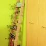 bekichiさんのお部屋写真 #5