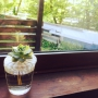 nomonさんのお部屋写真 #5