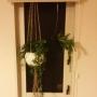 maruriさんのお部屋写真 #3