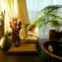 naoさんのお部屋写真 #2