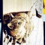 M.T.mikio-dethさんのお部屋写真 #2