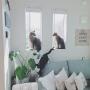 lovecatさんのお部屋写真 #2