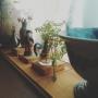 naraさんのお部屋写真 #5