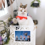 yuchiさんのお部屋写真 #4