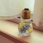 mihoさんのお部屋写真 #4