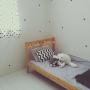 MIDOさんのお部屋写真 #3