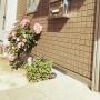 Masamiさんのお部屋写真 #2