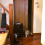 butachanさんのお部屋写真 #3