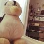 Manaさんのお部屋写真 #3