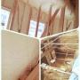 EMIさんのお部屋写真 #4