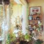 bunbunさんのお部屋写真 #2