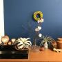 chiyaさんのお部屋写真 #3