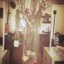 Appleさんのお部屋写真 #2