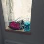 pistachioさんのお部屋写真 #3