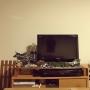 gyudonさんのお部屋写真 #5