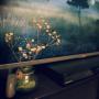 Nanakoさんのお部屋写真 #2