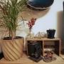 Norimakiさんのお部屋写真 #3