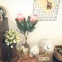 marorinさんのお部屋写真 #2