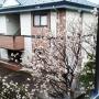 yukiさんのお部屋写真 #2