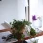 hamakajiさんのお部屋写真 #3