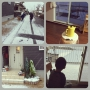 KaoriHさんのお部屋写真 #4