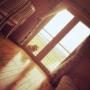 meggieさんのお部屋写真 #4