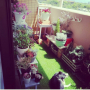 a_yyaさんのお部屋写真 #2