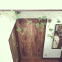 mokoさんのお部屋写真 #2