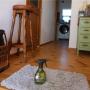 nemoさんのお部屋写真 #4