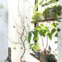 kiki_nekkoさんのお部屋写真 #2