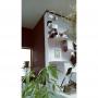 konoharuさんのお部屋写真 #3