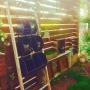 mananoki.1015さんのお部屋写真 #3