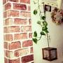 airyuさんのお部屋写真 #2