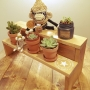 suzunaritenshiさんのお部屋写真 #3