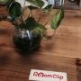 RoomClipJPさんのお部屋写真 #3