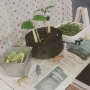 ray-sproutさんのお部屋写真 #4
