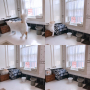 yuchiさんのお部屋写真 #5