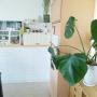 romiさんのお部屋写真 #5
