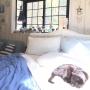 TiffanyTさんのお部屋写真 #5