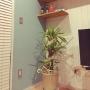 maさんのお部屋写真 #5