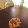 Camelliaさんのお部屋写真 #5