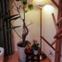 nozomiyaさんのお部屋写真 #3
