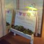 Whiteberryさんのお部屋写真 #5