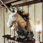 jankenkenさんのお部屋写真 #3