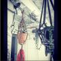 motomaki_zaouさんのお部屋写真 #4